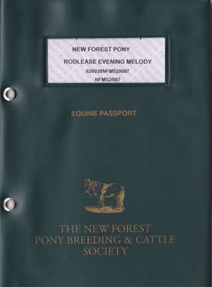 New Forest Pony Passport